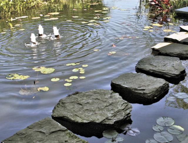 Stepping stones make feeding the koi fun; lily pads and small fountains please the eye.