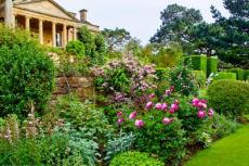The Caplan Rose Cotswolds tour will visit Kiftsgate Court Gardens, whose centenary is being celebrated with a new book on its rich history and an exhibition at London's Garden Museum.